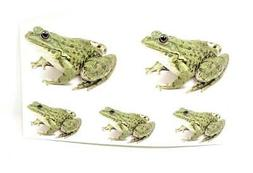 FROG Removable Fabric Vinyl Decal Sticker Set of 5 - 2 Sizes