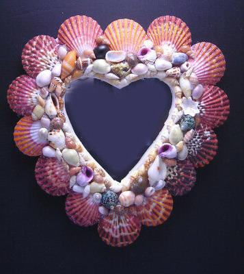 beautiful oval shaped seashell mirror 9x7 beach