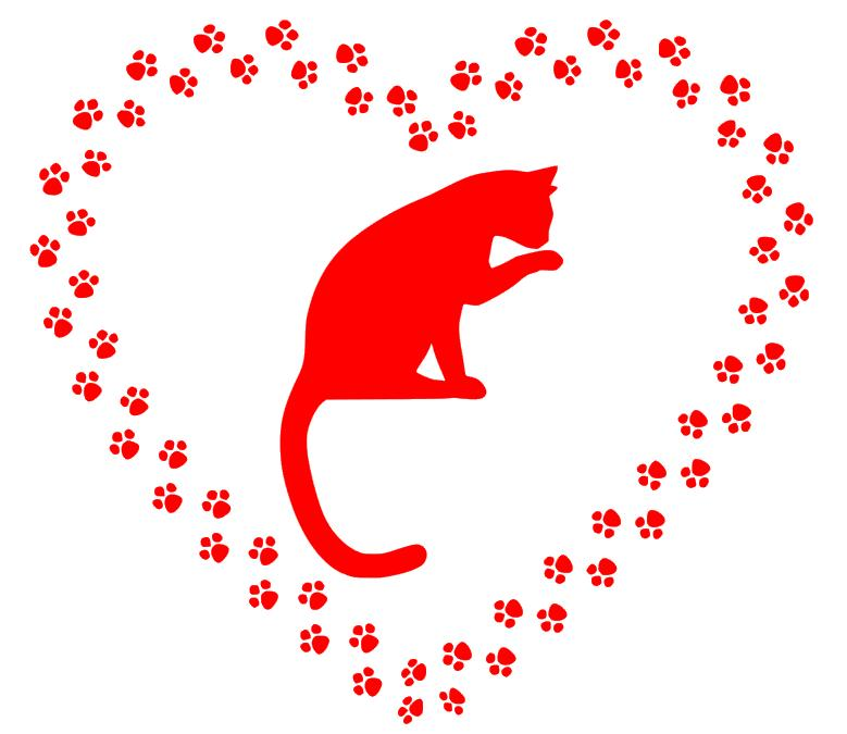 cat tracks decals vinyl wall decal sticker